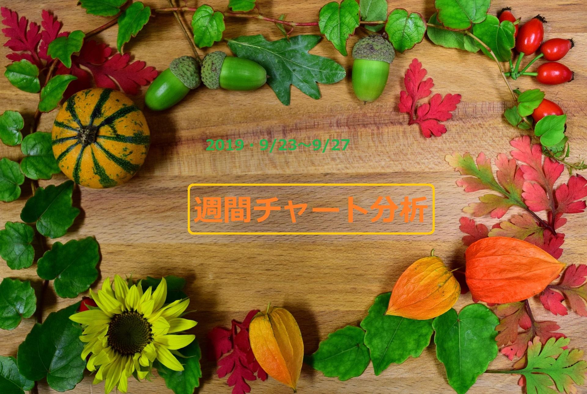 【FX】週間チャート分析・ドル円【2019・9/23~9/27】