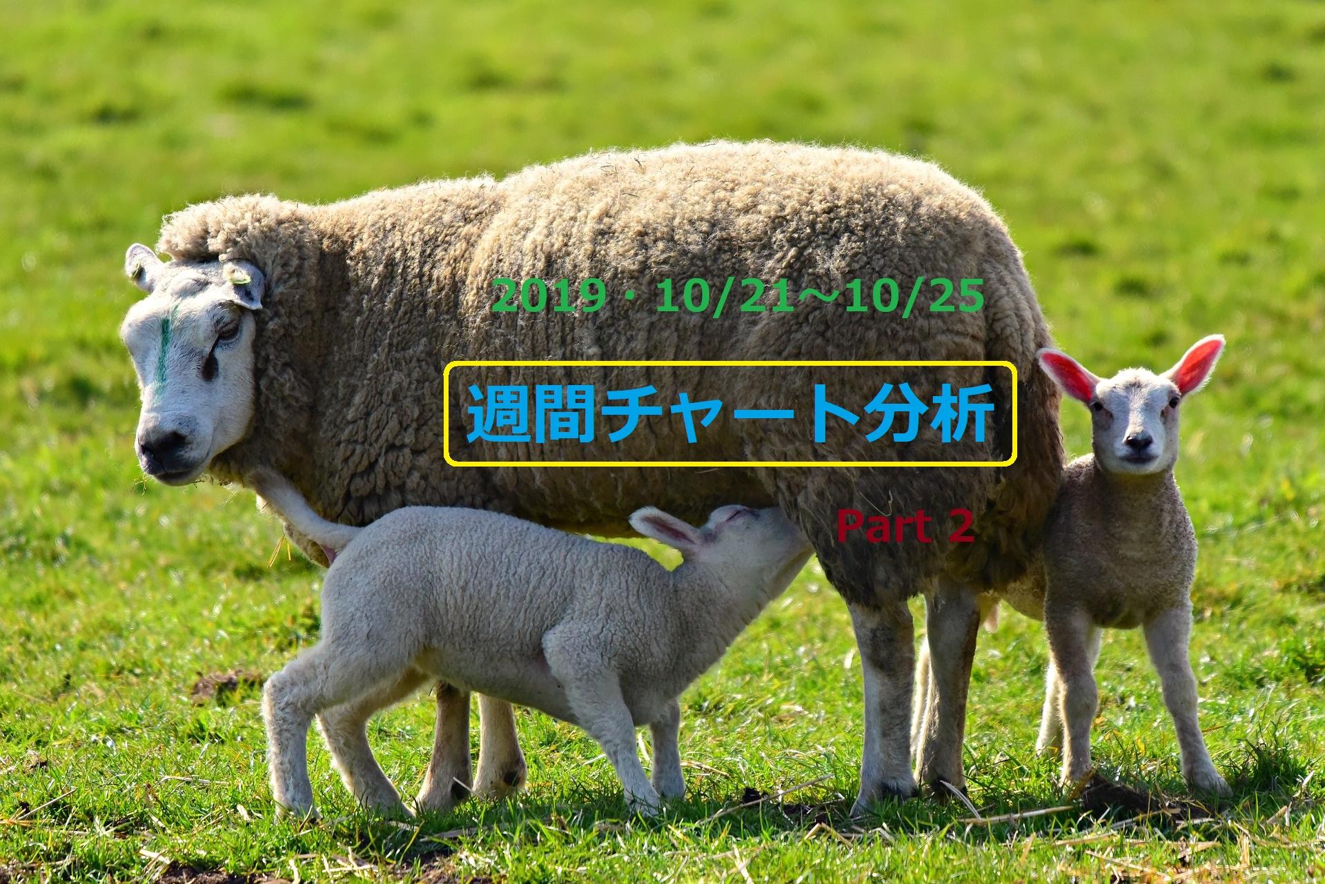 【FX】週間チャート分析【2019・10/21~10/25】【Part 2】