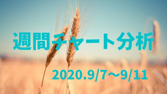 【FX相場予測】週間チャート分析・ドル円【2020.9/7~9/11】